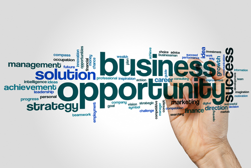 Business Opportunities in Houston